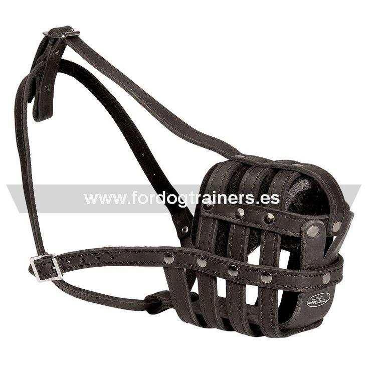 #Bozal ligero de cuero #perros #bulldog #francés. Precio básico-26,00 € http://www.fordogtrainers.es/index.php/productos-por-raza/bozal-ligero-de-cuero-perros-bulldog-france-maxima-seguridad-detail