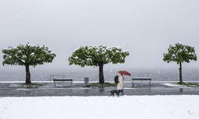 La neve a Zug, Svizzera