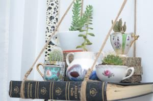 Boost Your Mood, Health and Brainpower With Indoor Plants and Flowers: DIY Teacup Garden with Bookshelf