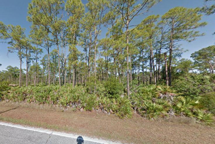 Vacant Land for Sale in Punta Gorda, Florida - Land Century