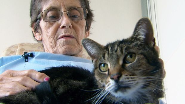 Juravinski Hospital, a small health-care facility in Hamilton, Ont., has launched a program that allows patients to see their pets.