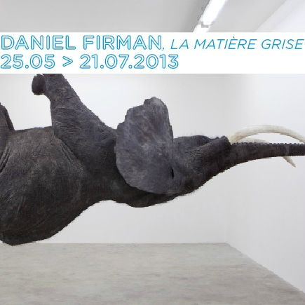 Pour sa première exposition personnelle, l'artiste contemporain Daniel Firman investit les murs du MAC (Musée d'Art Contemporain de Lyon) à Lyon avec ses créations renversantes. L'artiste revisite la définition de la sculpture à travers ses oeuvres, comme avec son éléphant grandeur nature. Il a imaginé une scénographie toute nouvelle pour l'occasion.