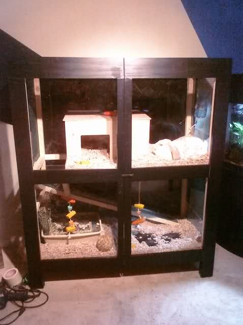 17 Best Images About Do It Yourself On Pinterest Rabbit Cages Homemade And Habitats