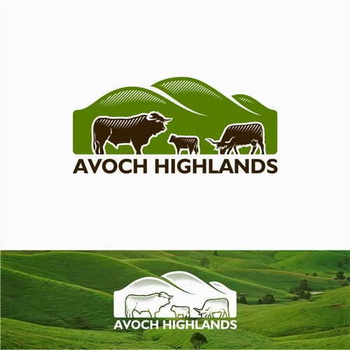 We need an eye catching but classic logo to showcase our highland cattle, lush location and farming practices