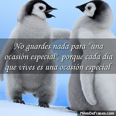 """No guardes nada para una ocasión especial"""" porque cada día que vives es una ocasión especial"""