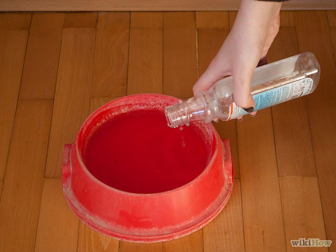 Not only does Biotene help freshen your dog's breath but it helps remove plaque and inhibits the growth of odor causing bacteria. The suggested usage is 4 pumps per quart of water for the first two weeks. Thereafter, reduce to 2 pumps per quart of water. The usage of Biotene is particularly beneficial for dogs that refuse to have their teeth brushed. The veterinary version of Biotene is safe for daily ingestion. Just don't use the OTC Biotene product meant for human applications.