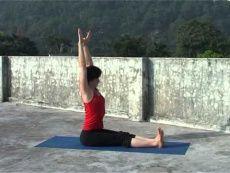 Хатха Йога для начинающих. Самые первые позы. (видео)