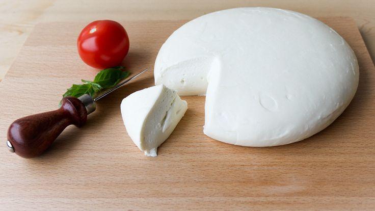 make your own mozzarella at home