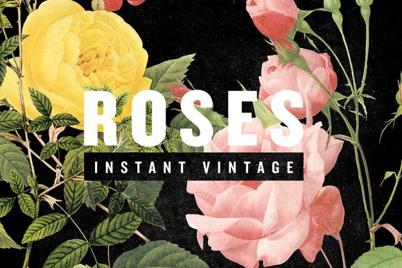 Check out ROSES by INSTANT VINTAGE on Creative Market