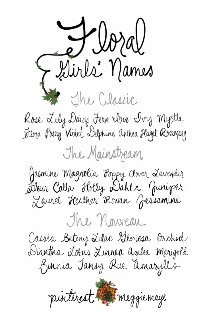 Flower Names For Girls. | Classics Rose, Lily, Daisy, Fern, Iris, Ivy, Myrtle, Flora, Posey, Violet, Delphine, Anthea, Hazel | Mainstream Moderners Jasmine, Magnolia, Poppy, Clover, Lavender, Fleur, Calla, Holly, Dahlia, Juniper, Laurel, Heather, Rowan, Jessamine | Unspoilt beauties Cassia, Betony, Lilac, Gloriosa, Orchid, Diantha, Lotus, Linnea, Azalea, Marigold, Zinnia, Tansy, Rue, and Amaryllis | Hand drawn by Meg at pinterest.com/meggiemaye