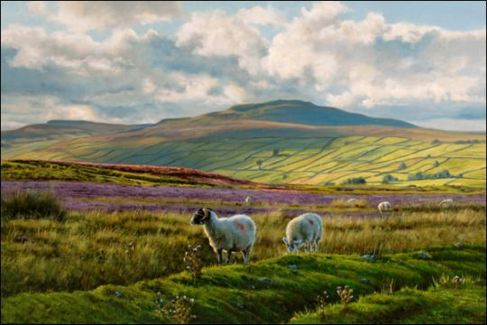 The Dales near Reeth, Swaledale, North Yorkshire, England by Paul Harley