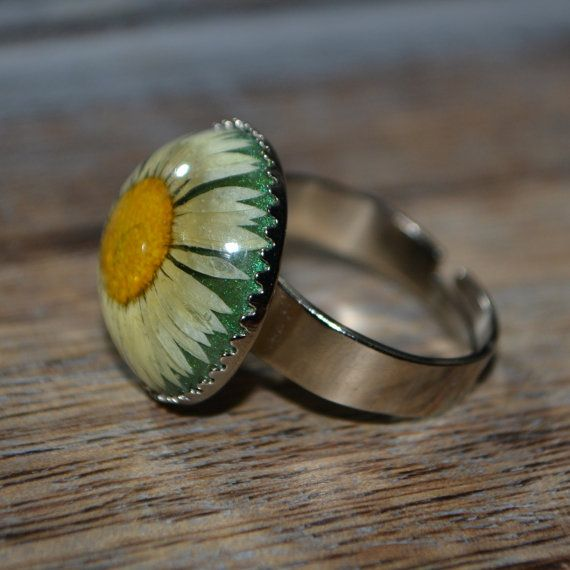 Real Pressed Daisy Flower Resin Ring in black resin on an 18mm silver crown setting