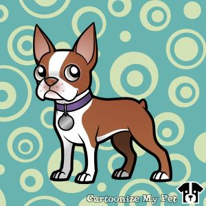 Cute Red Boston Terrier Cartoon.   #bostonterrier #dogs #dog #cutedog #petlover #pets #pet #doglover #cartoon #redbostonterrier
