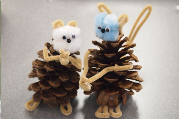 67 best images about cute bug projects on pinterest for Pine cone art projects