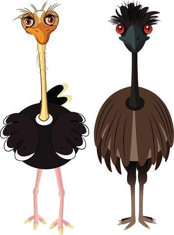 Royalty Free Platypus Cartoon Clip Art, Vector Images & Illustrations - iStock