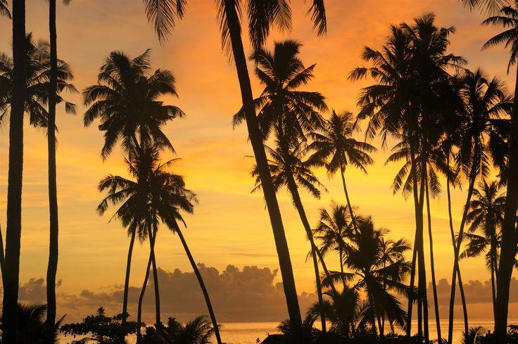 Return to Paradise Beach Resort, SAMOA Typical sunset