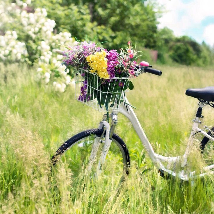 In Germany all ride my bike in any season and in any clothes. #cosmiclookcom #travel #trip #Bike #germany #совет #немцы #германия #велосипед #лето #summer
