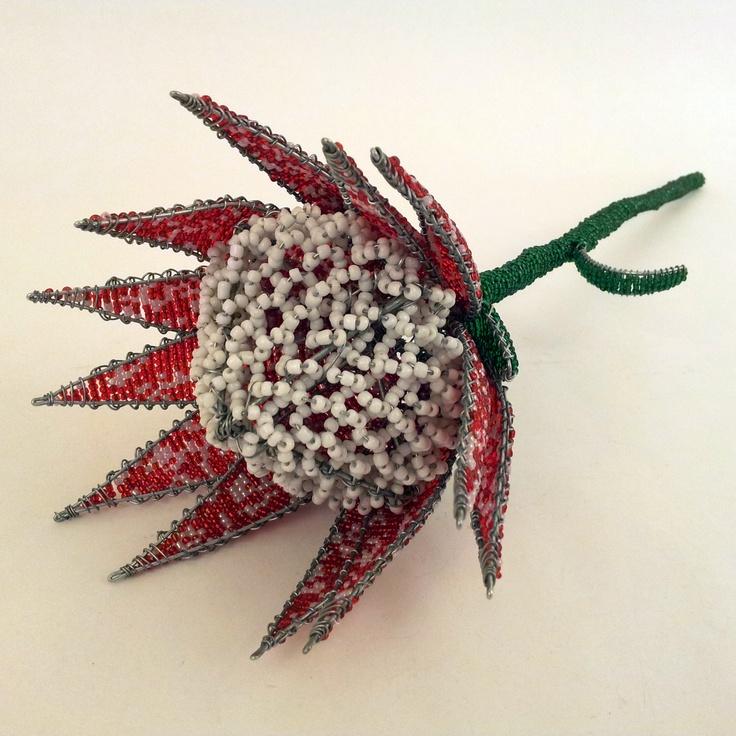 Wire bead proteas