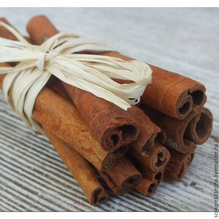 Купить Корица палочки - коричневый, корица, палочки корицы, натуральные материалы, для флористики, для скрапбукинга, корица