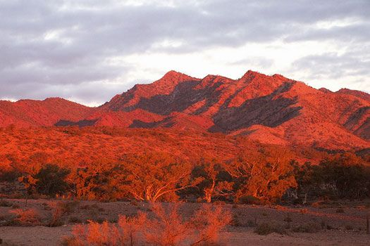 Sunset on the Flinders Ranges #Australia