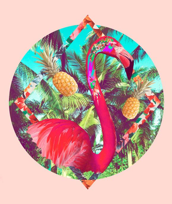 The flamingo is very effective around the tropical background. I find this photo outstanding and colourful.