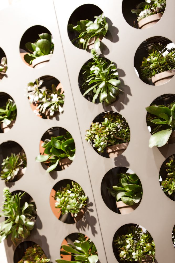 Laser cut steel vertical garden ideal for succulents, herbs and other low maintenance plants. powder coated metal