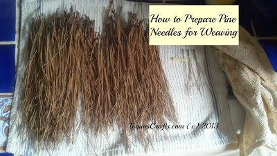 Toqua's Crafts: How to Prepare Pine Needles for Weaving