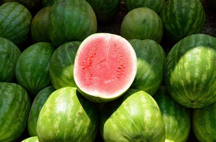 Seznamte se s různými druhy melounů a tím, co vašemu zdraví přínáší