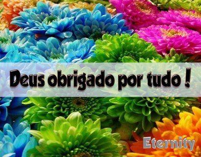 Deus obrigado por tudo! #frases deus obrigado deus