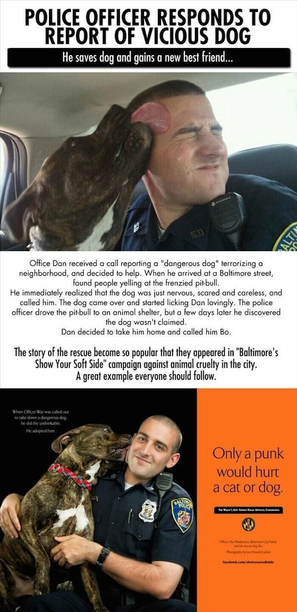 Police And Dogs