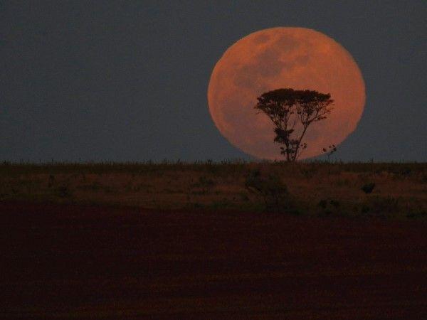 La superluna por el mundo (© REUTERS/Ueslei Marcelino)