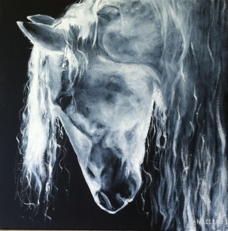 Painting of a beautiful white horse. Started with a black background and painted layers of white. Reference photo by Vikarus