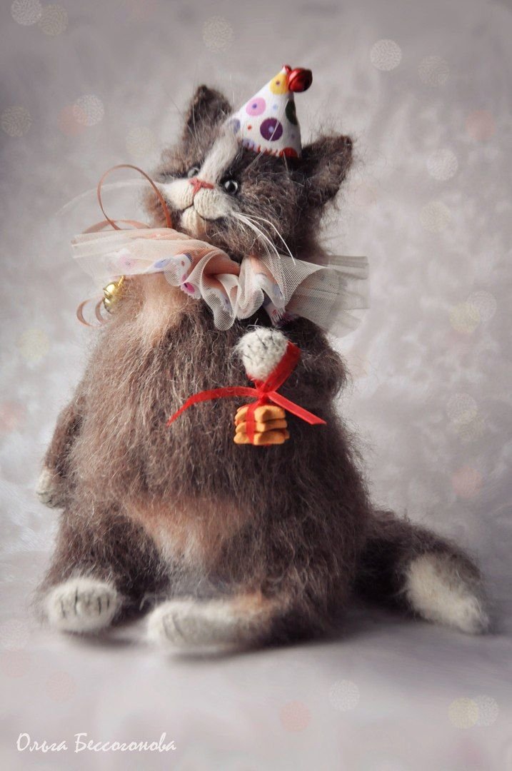 Новости. Party Cat.