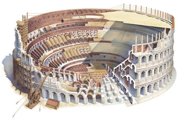 Drawing Of Colosseum Architecture Google Search Italy