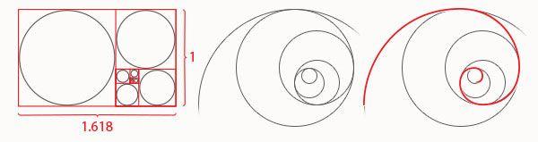 Fibonacci Circles