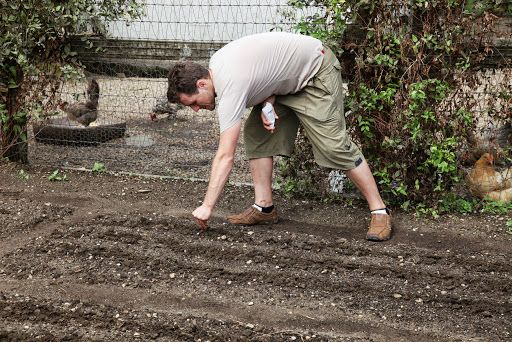 Martha's gardener Ryan planting with chickens in the background (could also be on my Crushes board!)