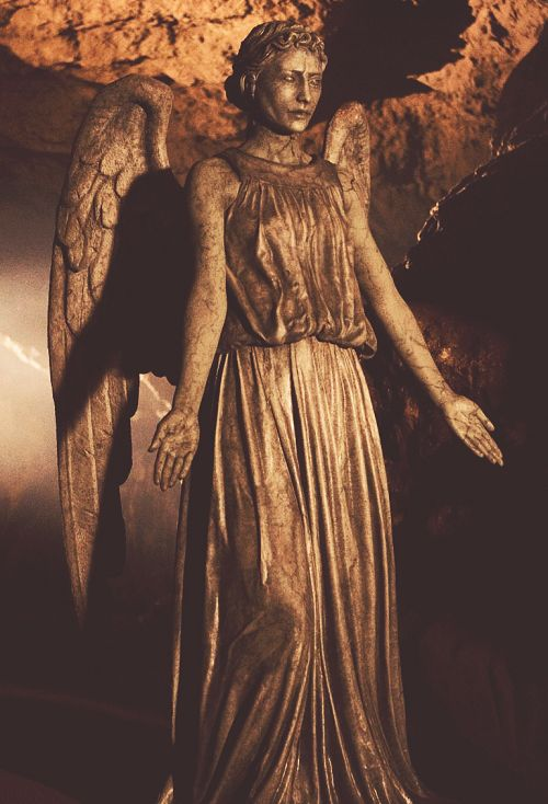 A weeping angel....don't forget an image of an angel, is an angel