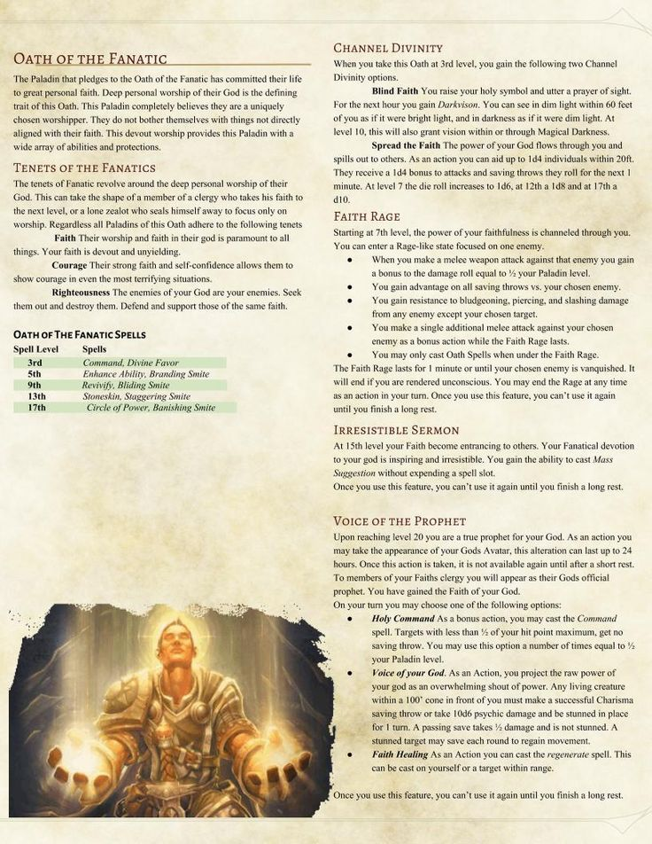 Oath of the Fanatic Paladin by oblatesphereoid