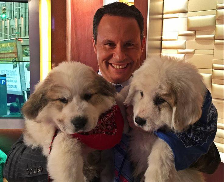 Meet Brian Kilmeade S New Dogs Rocky Amp Apollo The Day