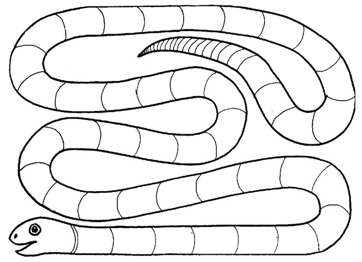 Syllable snake game the teacher will say a word and for for Make your own snakes and ladders template