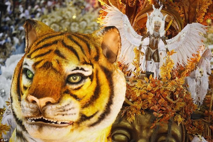 In the forest of the night: A model tiger leads a fantastical float through Rio's Sambadrome on the last night of the Carnival