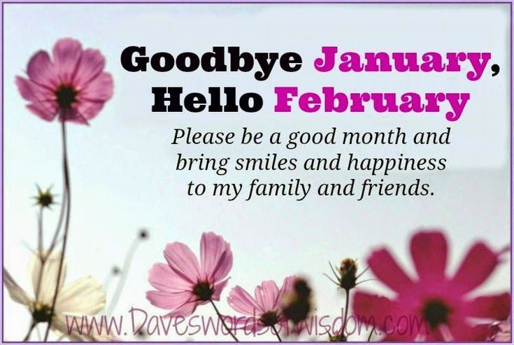 Goodbye January Hello February Please Be A Good Month quotes february february…