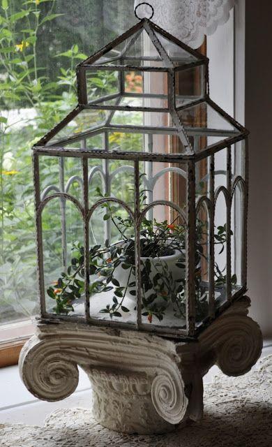 \A Victorian Terrarium