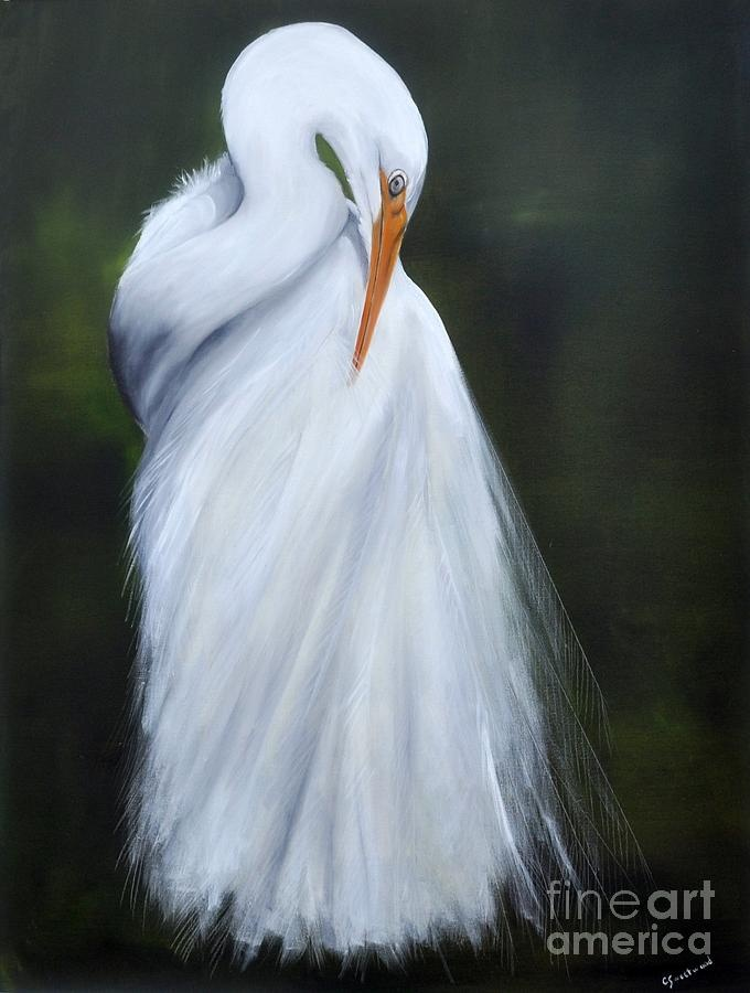 White egret shines canvas print canvas art by patricia for White heron paint
