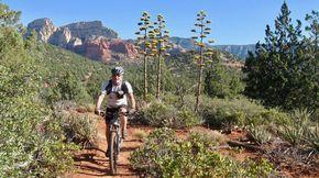 10 of the Best MTB Trails You've Never Heard Of. Singletracks Mountain Bike News.