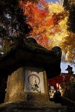 Lanterne de pierre au sanctuaire Kasuga Taisha, Nara, Japon