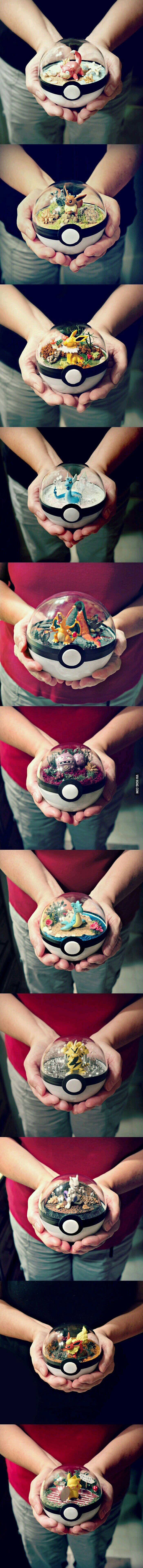 Pokemon Terrarium. You know you want it http://ibeebz.com
