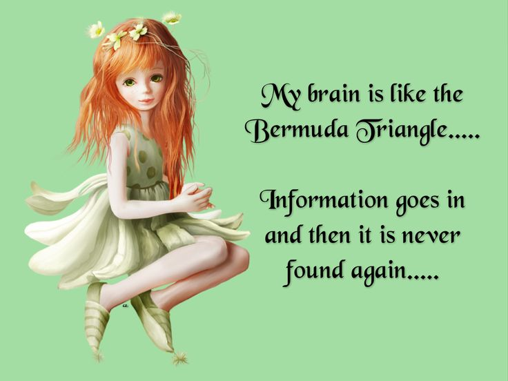 My brain is like the Bermuda Triangle..... Information goes in and then it is never found again.....