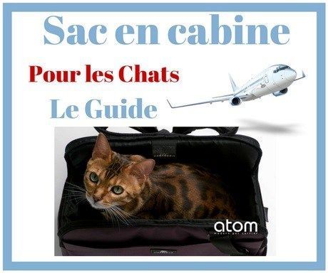 Sac IATA en cabine - Les 7 + 1 Meilleurs modèles de Transport pour Chat en Avion