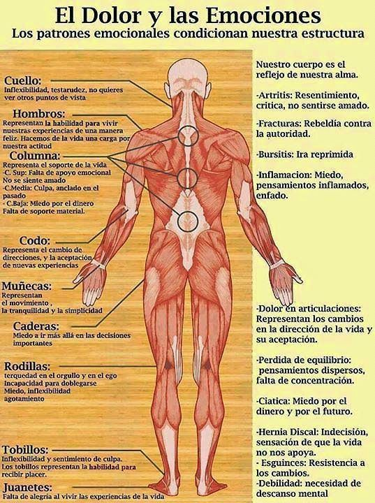 ¿Pueden los patrones emocionales condicionar los dolores que sentimos? #emociones #salud #infografía